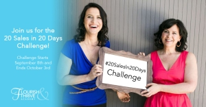 #20SalesIn20Days Challenge